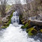 Idlewild dam opened