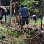 Montane Trails