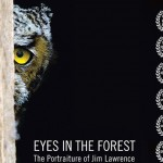 Eyes In the Forest tour