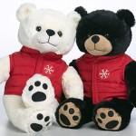 BC Share a bear