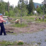 Eco park June Tuesdays at