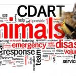 CDART