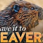 ATL Beavers