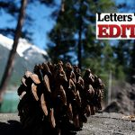 Letter to the Editor 8